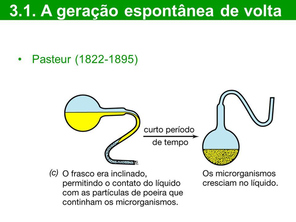 3.1. A geração espontânea de volta Pasteur (1822-1895)