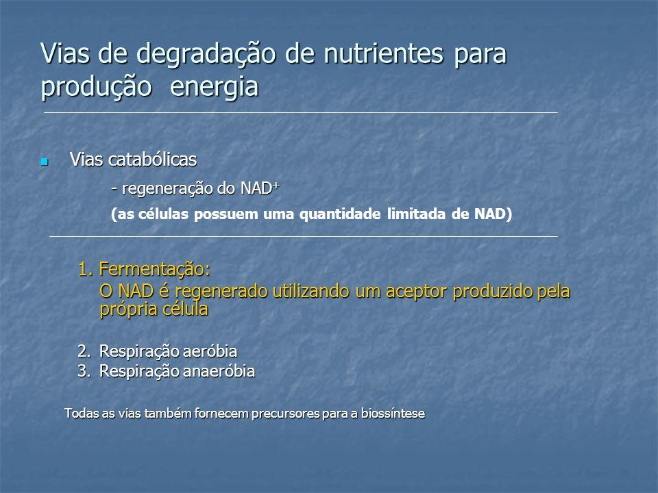 Vias de degradação de nutrientes para produção energia Vias catabólicas Vias catabólicas - regeneração do NAD + (as células possuem uma quantidade lim