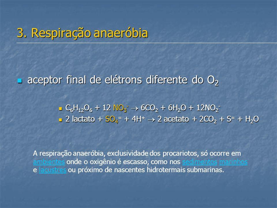 3. Respiração anaeróbia aceptor final de elétrons diferente do O 2 aceptor final de elétrons diferente do O 2 C 6 H 12 O 6 + 12 NO 3 - 6CO 2 + 6H 2 O