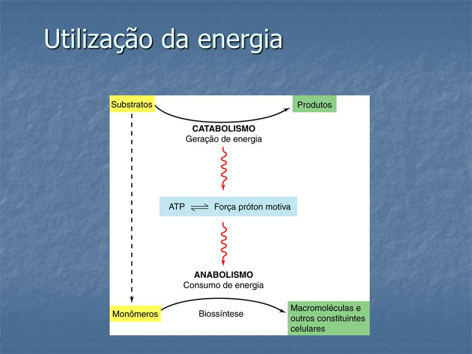 Utilização da energia