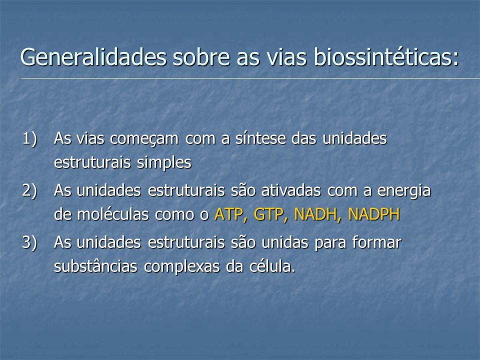 Generalidades sobre as vias biossintéticas: 1)As vias começam com a síntese das unidades estruturais simples 2)As unidades estruturais são ativadas co