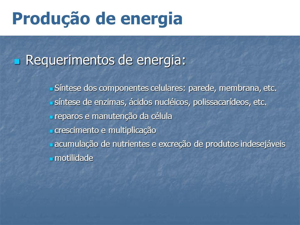 Produção de energia Requerimentos de energia: Requerimentos de energia: Síntese dos componentes celulares: parede, membrana, etc. Síntese dos componen
