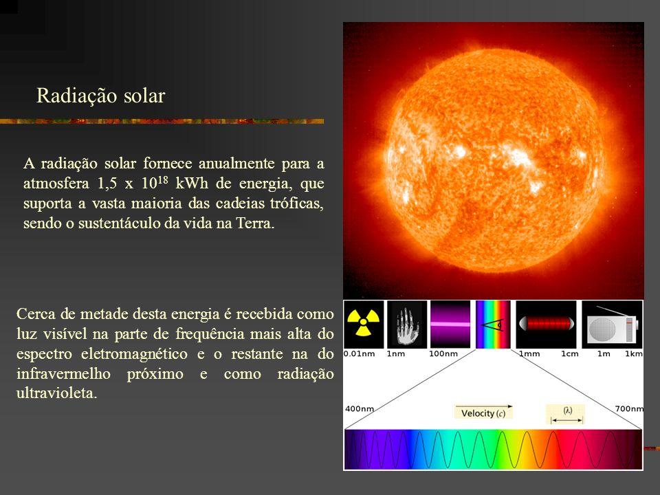 A radiação solar fornece anualmente para a atmosfera 1,5 x 10 18 kWh de energia, que suporta a vasta maioria das cadeias tróficas, sendo o sustentáculo da vida na Terra.