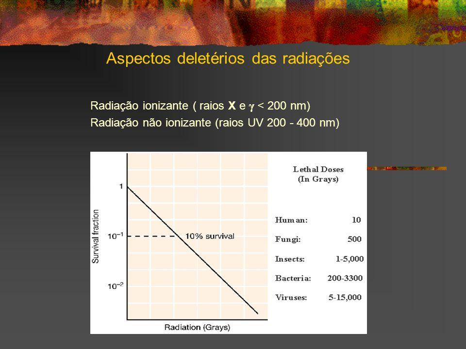 Aspectos deletérios das radiações Radiação ionizante ( raios X e γ < 200 nm) Radiação não ionizante (raios UV 200 - 400 nm)