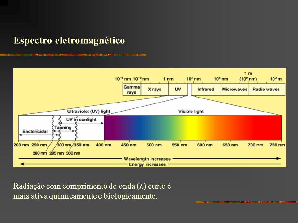 Espectro eletromagnético Radiação com comprimento de onda (λ) curto é mais ativa quimicamente e biologicamente.