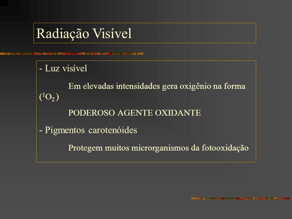 Radiação Visível - Luz visível Em elevadas intensidades gera oxigênio na forma ( 1 O 2 ) PODEROSO AGENTE OXIDANTE - Pigmentos carotenóides Protegem mu