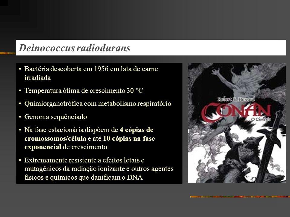 Deinococcus radiodurans Bactéria descoberta em 1956 em lata de carne irradiada Temperatura ótima de crescimento 30 °C Quimiorganotrófica com metabolis