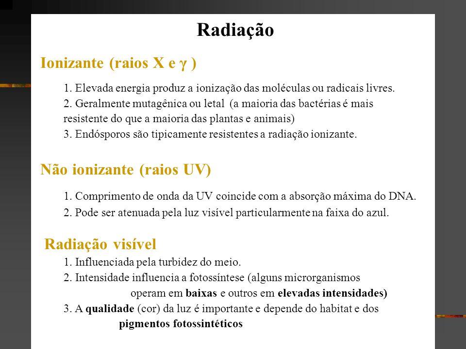 Radiação Ionizante (raios X e γ ) 1. Elevada energia produz a ionização das moléculas ou radicais livres. 2. Geralmente mutagênica ou letal (a maioria