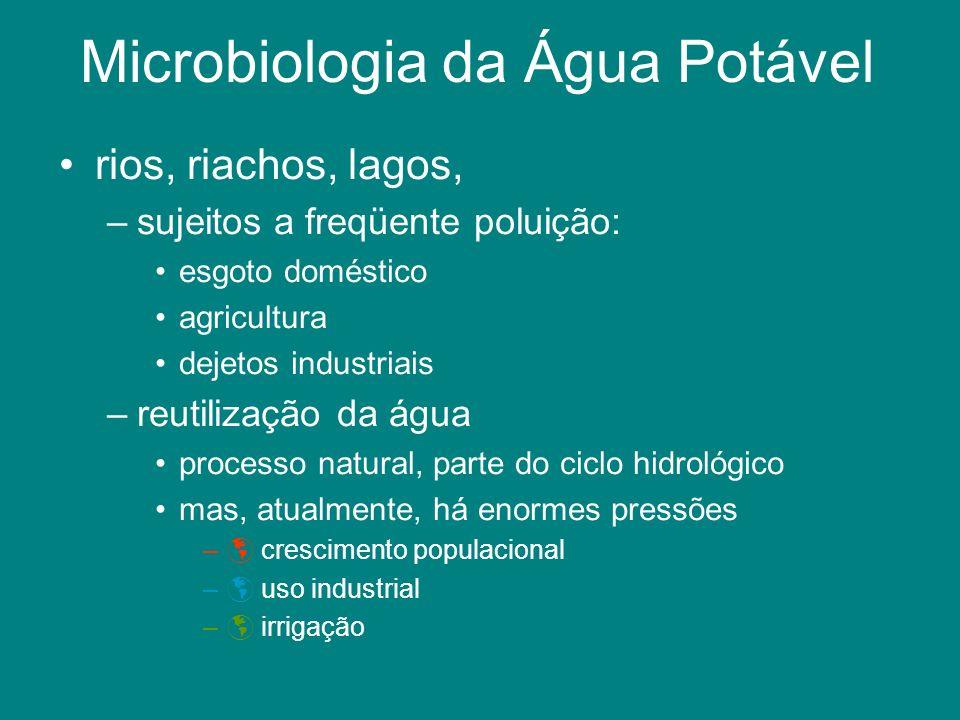 Microbiologia da Água Potável rios, riachos, lagos, –sujeitos a freqüente poluição: esgoto doméstico agricultura dejetos industriais –reutilização da