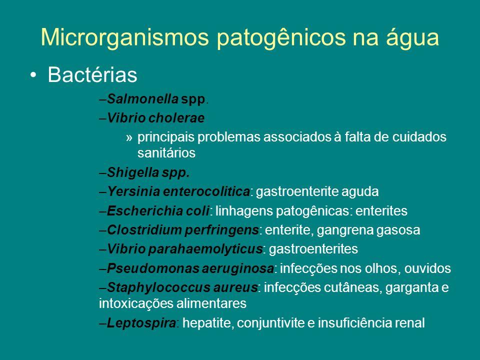 Bactérias –Salmonella spp. –Vibrio cholerae »principais problemas associados à falta de cuidados sanitários –Shigella spp. –Yersinia enterocolitica: g