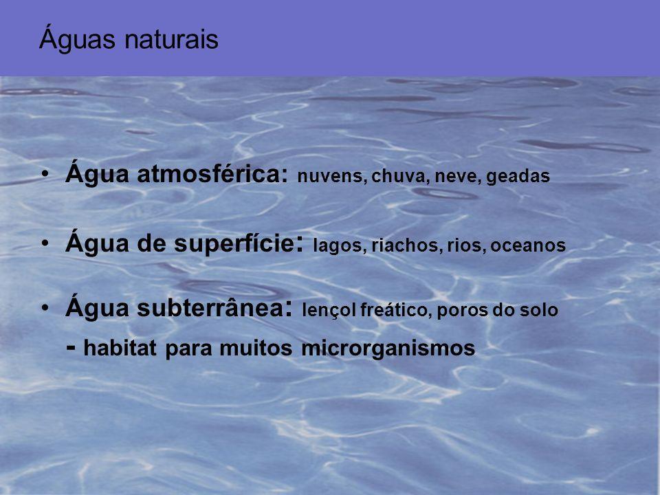 Nutrientes orgânicos e inorgânicos –nitratos e fosfatos: »algas eutrofização O 2 crescimento de outros organismos carga de nutrientes: –águas próximas à praia: variável (esgotos) –águas de mar aberto: estável e baixa »baixo fitoplâncton (baixo N e Fe) »baixa atividade heterotrófica »atividade fotossintetizante: cianobactérias efluentes industriais: presença de antimicrobianos »alguns microrganismos convertem tais substâncias em formas menos nocivas: Pseudomonas spp.: mercúrio metil mercúrio (volátil) O ambiente aquático