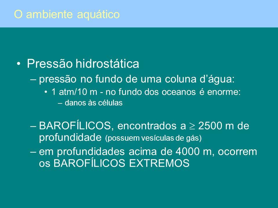 Pressão hidrostática –pressão no fundo de uma coluna dágua: 1 atm/10 m - no fundo dos oceanos é enorme: –danos às células –BAROFÍLICOS, encontrados a