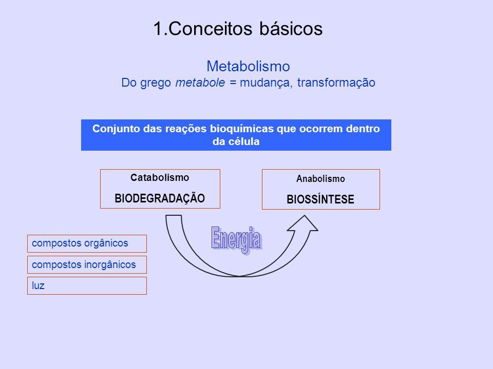 Metabolismo Do grego metabole = mudança, transformação 1.Conceitos básicos Conjunto das reações bioquímicas que ocorrem dentro da célula Catabolismo B