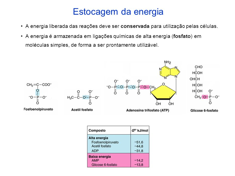 Exemplos de receptores de elétrons Oxigênio (O 2 ) água (H 2 O) em diversos organismos Dióxido de carbono (CO 2 ) Metano (CH 4 ) nas bactérias metanogênicas 4H 2 + CO 2 CH 4 + 2H 2 O Delta G° = -31 kcal/mol