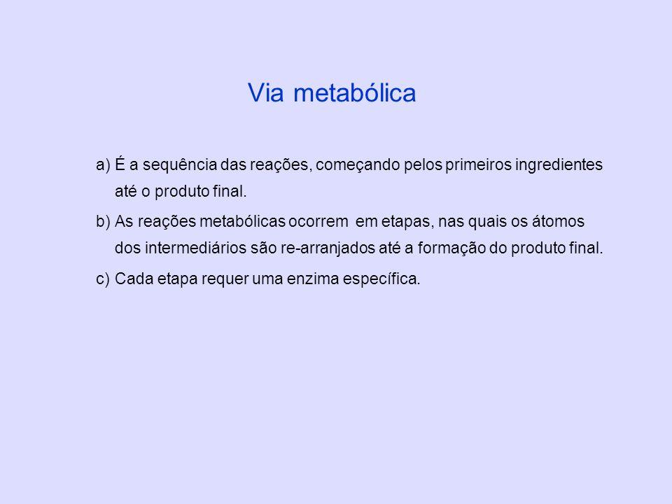 a)É a sequência das reações, começando pelos primeiros ingredientes até o produto final. b)As reações metabólicas ocorrem em etapas, nas quais os átom