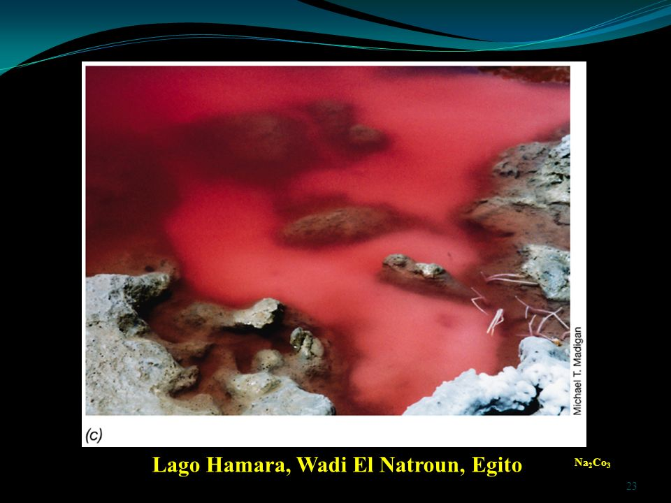 Lago Hamara, Wadi El Natroun, Egito Na 2 Co 3 23
