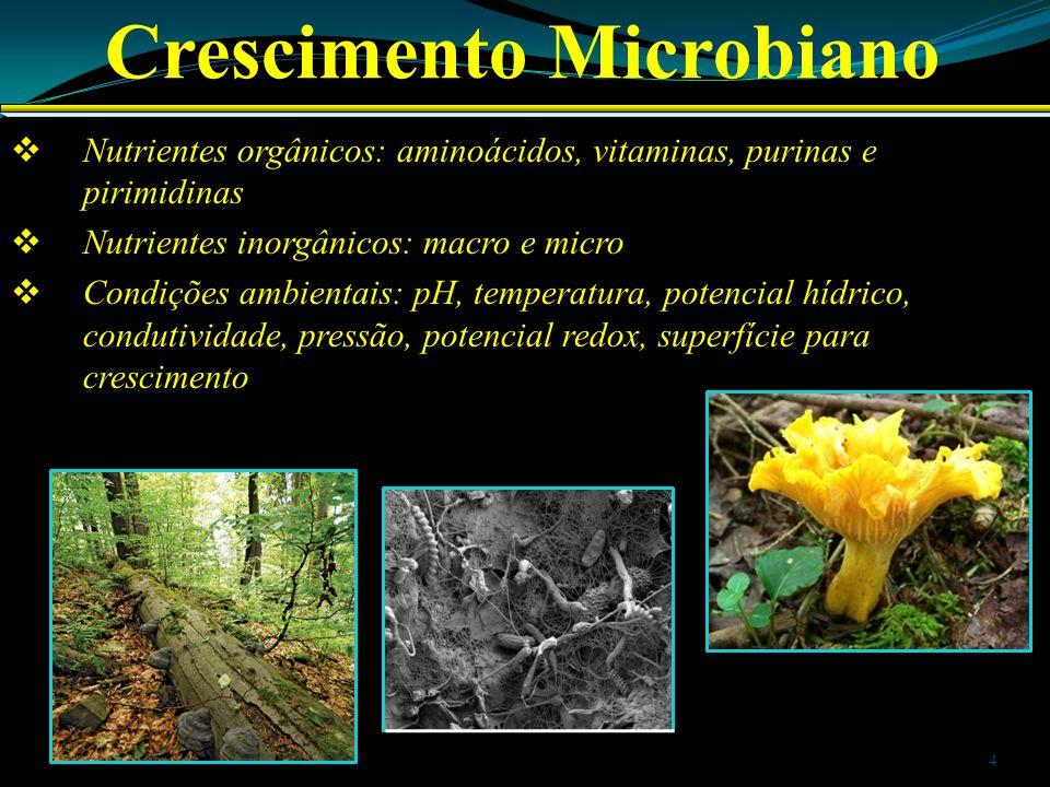 Crescimento Microbiano Nutrientes orgânicos: aminoácidos, vitaminas, purinas e pirimidinas Nutrientes inorgânicos: macro e micro Condições ambientais: