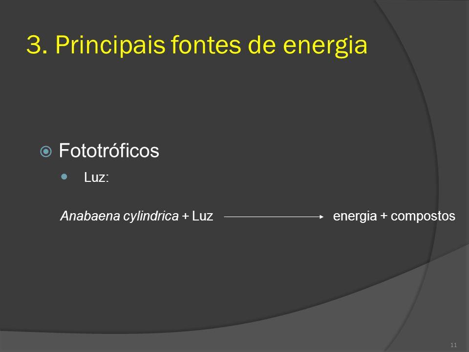 3. Principais fontes de energia Fototróficos Luz: Anabaena cylindrica + Luz energia + compostos 11