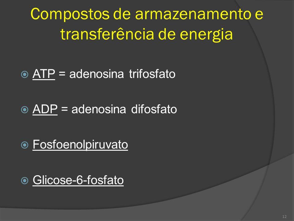 Compostos de armazenamento e transferência de energia ATP = adenosina trifosfato ADP = adenosina difosfato Fosfoenolpiruvato Glicose-6-fosfato 12
