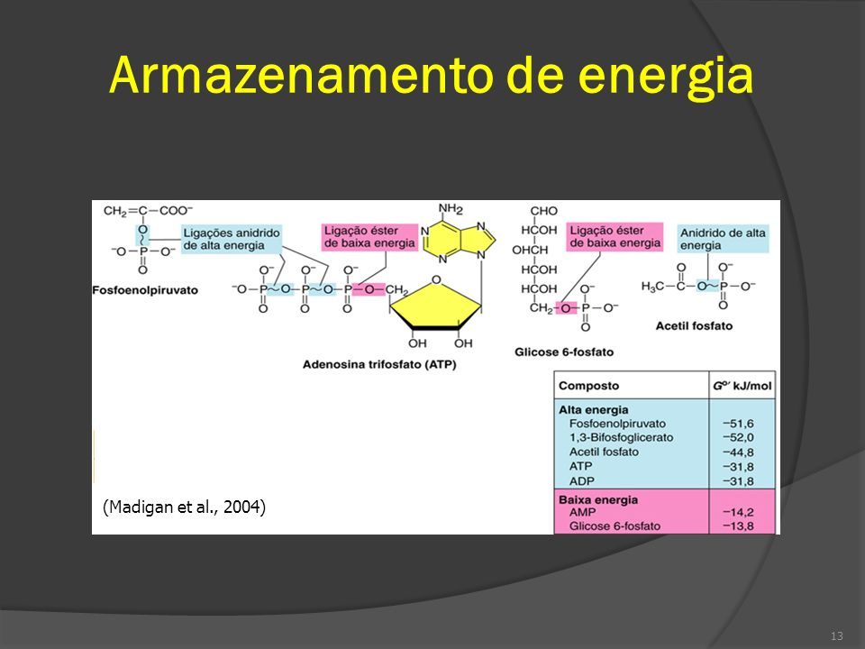 Armazenamento de energia (Madigan et al., 2004) 13
