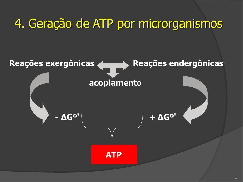 4. Geração de ATP por microrganismos Reações exergônicas Reações endergônicas acoplamento - ΔGº' ATP + ΔGº' 14
