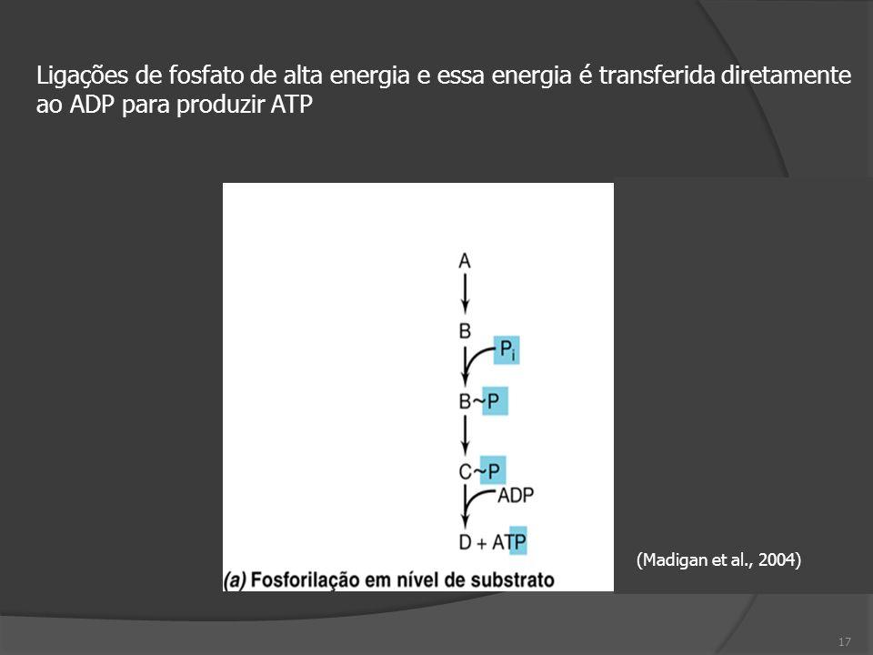 (Madigan et al., 2004) Ligações de fosfato de alta energia e essa energia é transferida diretamente ao ADP para produzir ATP 17