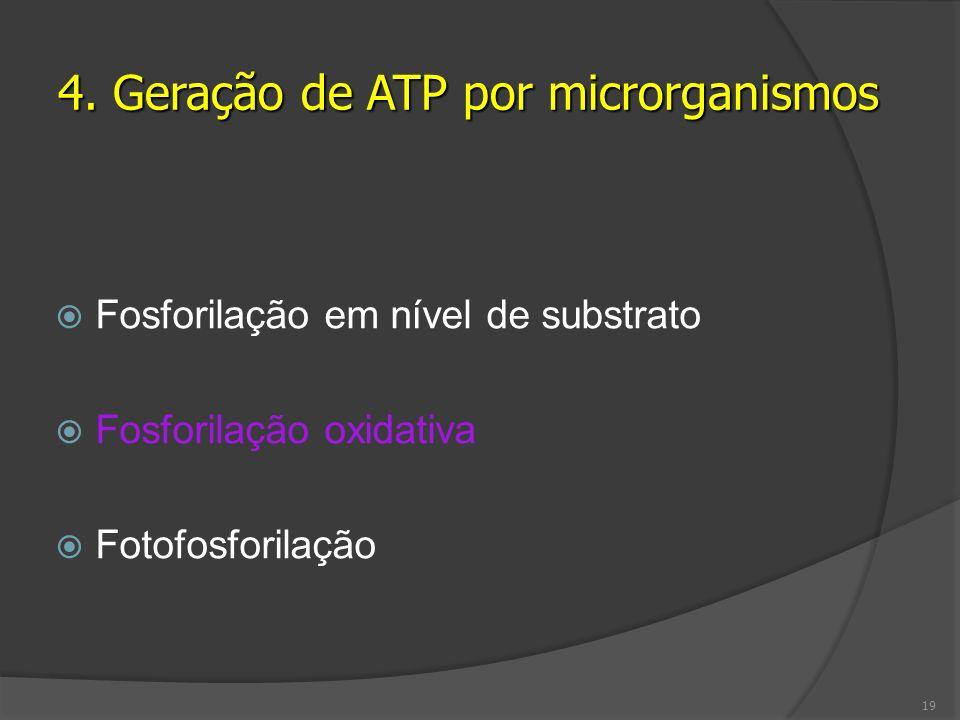 Fosforilação em nível de substrato Fosforilação oxidativa Fotofosforilação 4. Geração de ATP por microrganismos 19