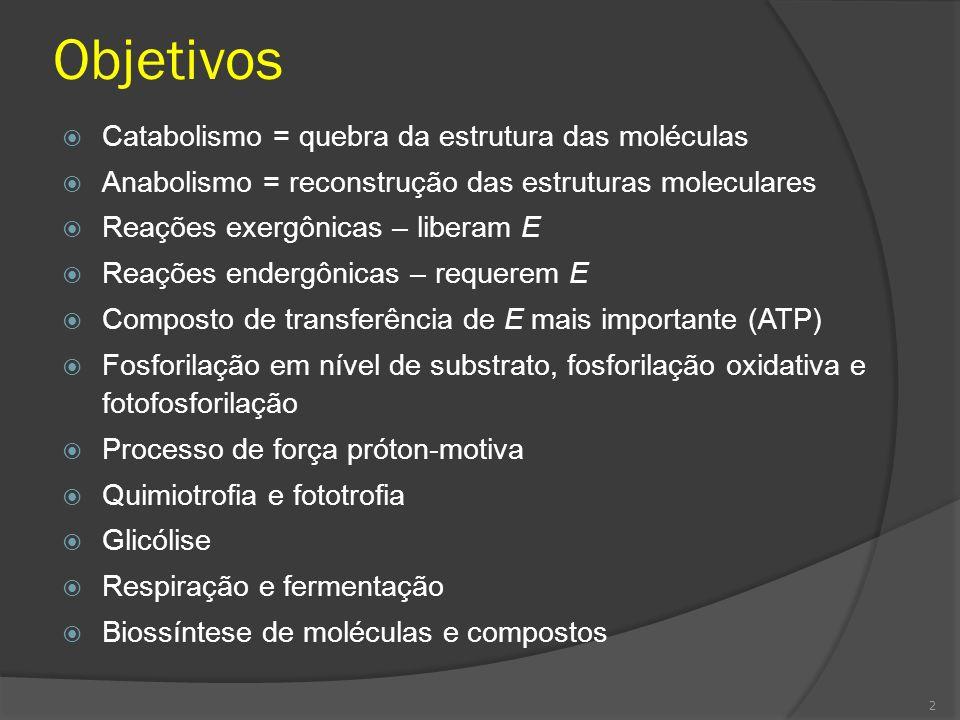 1.Introdução Metabolismo: toda a atividade química realizada por um organismo e seu maquinário.