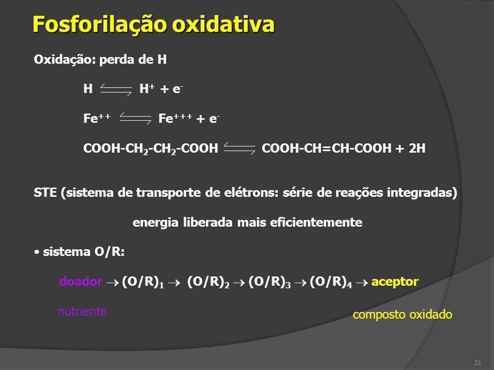 Oxidação: perda de H H H + + e - Fe ++ Fe +++ + e - COOH-CH 2 -CH 2 -COOH COOH-CH=CH-COOH + 2H STE (sistema de transporte de elétrons: série de reaçõe