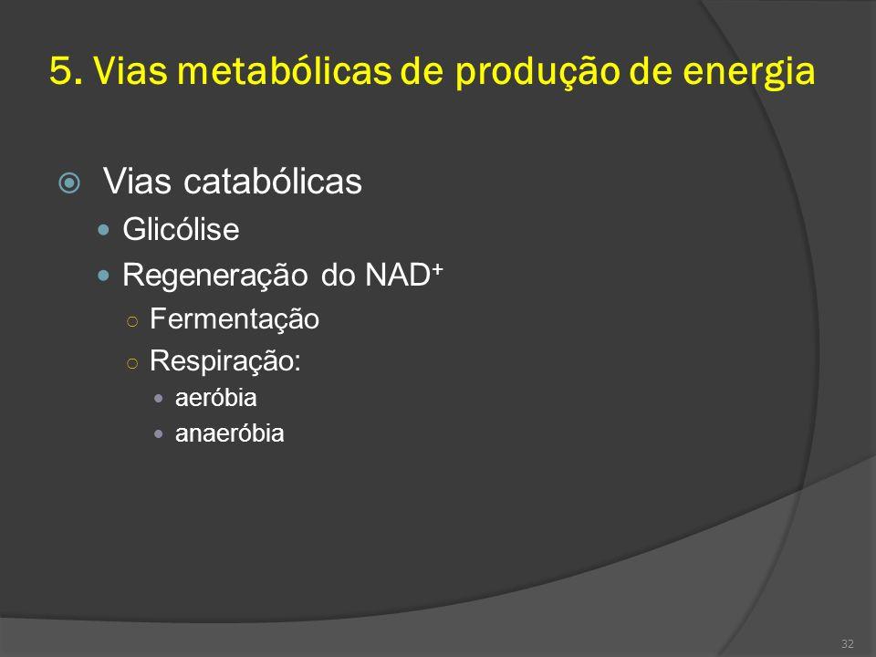 5. Vias metabólicas de produção de energia Vias catabólicas Glicólise Regeneração do NAD + Fermentação Respiração: aeróbia anaeróbia 32