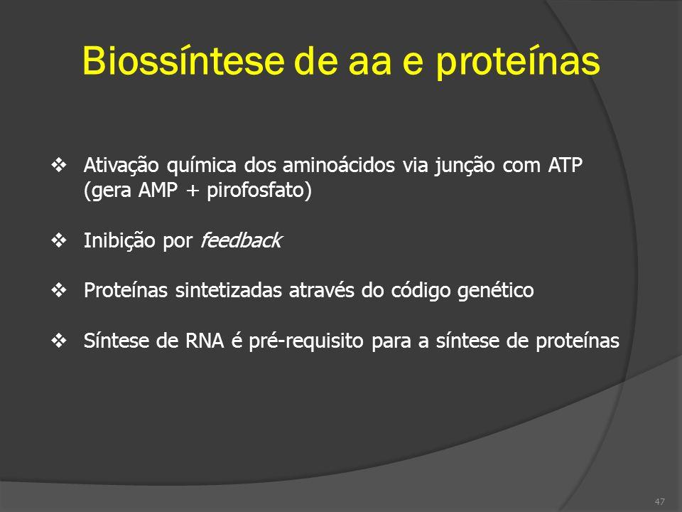 Biossíntese de aa e proteínas Ativação química dos aminoácidos via junção com ATP (gera AMP + pirofosfato) Inibição por feedback Proteínas sintetizada
