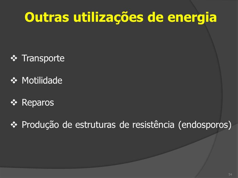 Outras utilizações de energia Transporte Motilidade Reparos Produção de estruturas de resistência (endosporos) 54