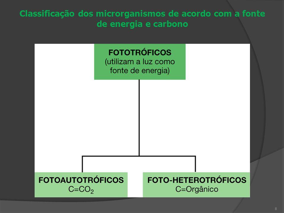 Tipo fisiológicoFonte de EnergiaFonte de Carbono FotoLuz QuimioQuímica Autotrófico/organotróficoMoléculas orgânicas Heterotrófico/litotróficoMoléculas inorgânicas 9