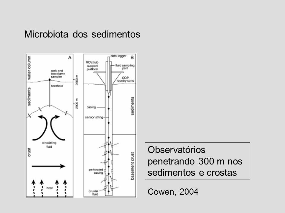 Microbiota dos sedimentos Cowen, 2004 Observatórios penetrando 300 m nos sedimentos e crostas