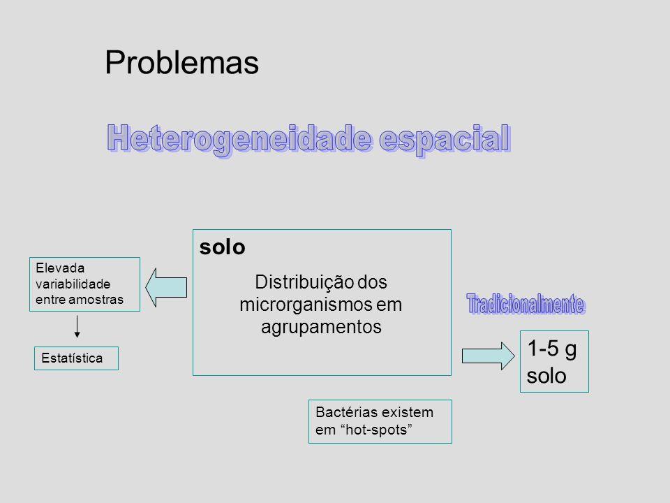 Problemas solo Distribuição dos microrganismos em agrupamentos Bactérias existem em hot-spots 1-5 g solo Elevada variabilidade entre amostras Estatíst