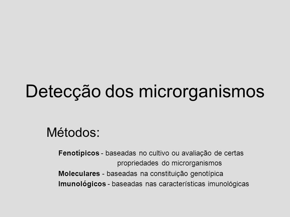 Detecção dos microrganismos Métodos: Fenotípicos - baseadas no cultivo ou avaliação de certas propriedades do microrganismos Moleculares - baseadas na