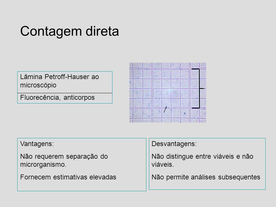 Contagem direta Lâmina Petroff-Hauser ao microscópio Fluorecência, anticorpos Vantagens: Não requerem separação do microrganismo. Fornecem estimativas