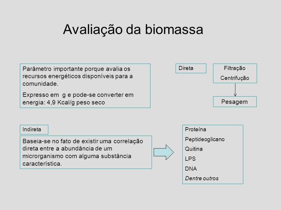 Avaliação da biomassa Parâmetro importante porque avalia os recursos energéticos disponíveis para a comunidade. Expresso em g e pode-se converter em e
