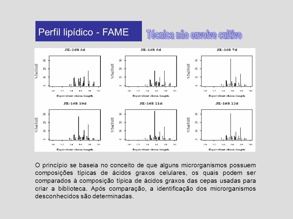 Perfil lipídico - FAME O princípio se baseia no conceito de que alguns microrganismos possuem composições típicas de ácidos graxos celulares, os quais