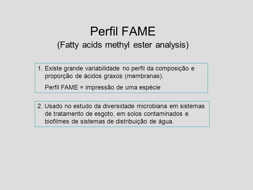 Perfil FAME (Fatty acids methyl ester analysis) 1.Existe grande variabilidade no perfil da composição e proporção de ácidos graxos (membranas). Perfil