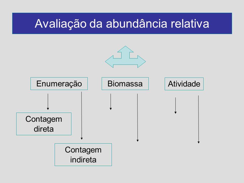 Avaliação da abundância relativa EnumeraçãoBiomassa Atividade Contagem direta Contagem indireta