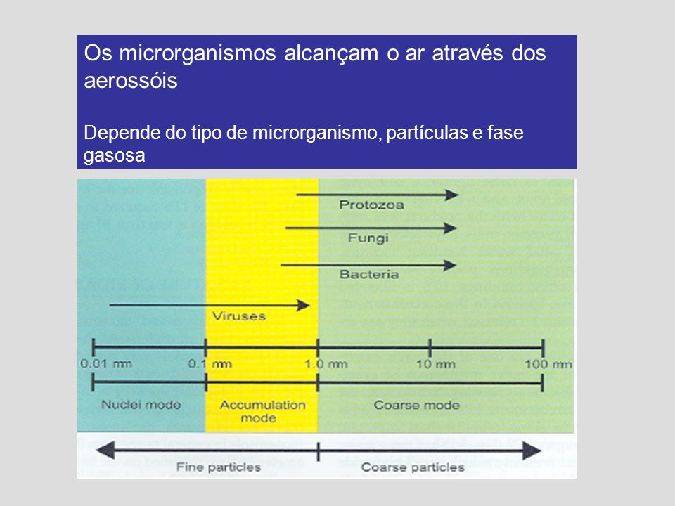 Os microrganismos alcançam o ar através dos aerossóis Depende do tipo de microrganismo, partículas e fase gasosa