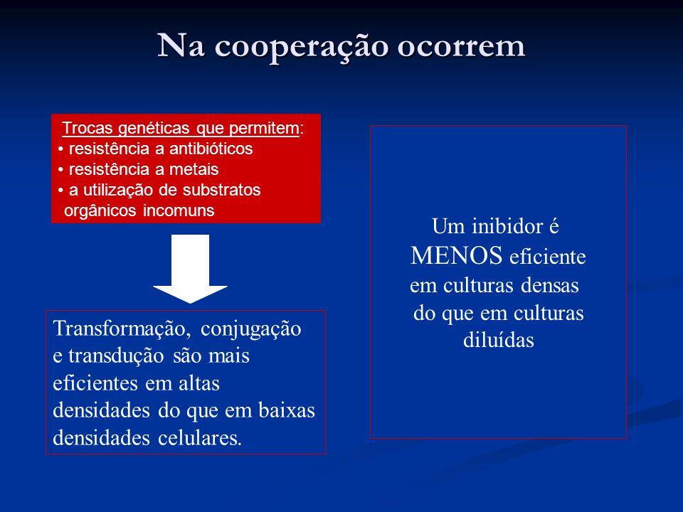 Na cooperação ocorrem Um inibidor é MENOS eficiente em culturas densas do que em culturas diluídas Transformação, conjugação e transdução são mais efi