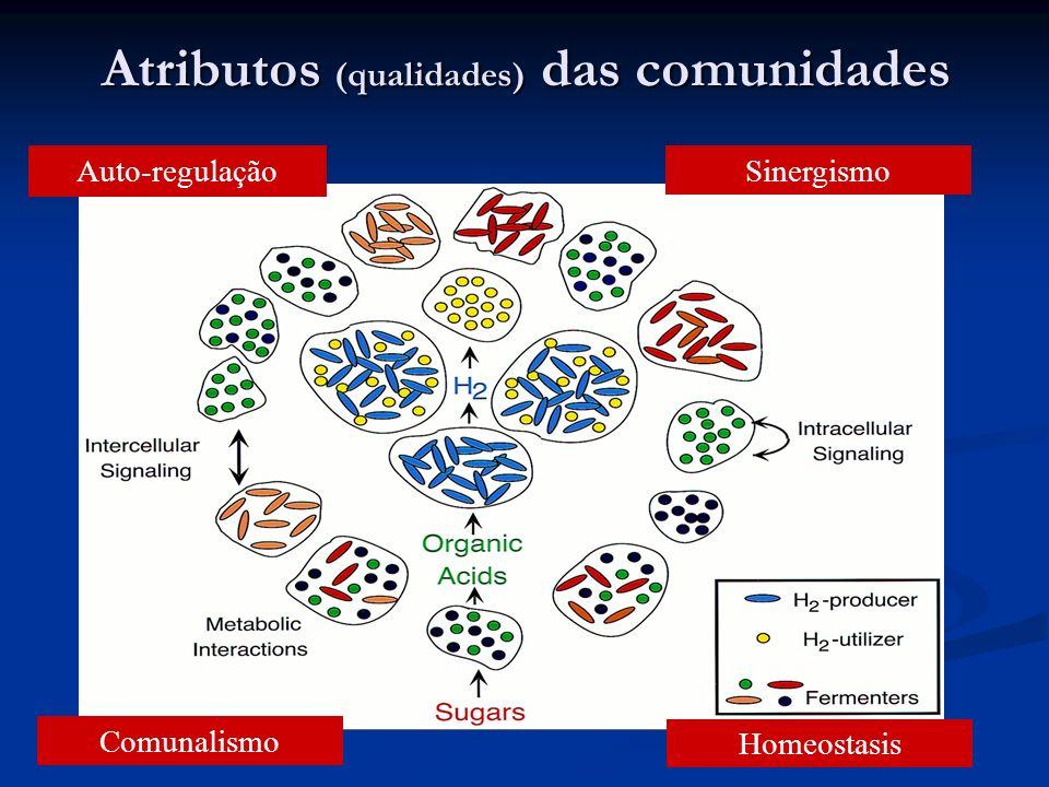 Atributos (qualidades) das comunidades Auto-regulação Comunalismo Homeostasis Sinergismo