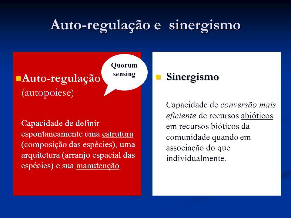 Auto-regulação e sinergismo Auto-regulação (autopoiese) Capacidade de definir espontaneamente uma estrutura (composição das espécies), uma arquitetura