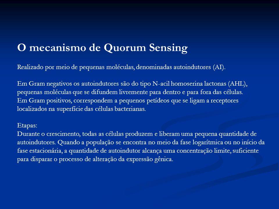 O mecanismo de Quorum Sensing Realizado por meio de pequenas moléculas, denominadas autoindutores (AI). Em Gram negativos os autoindutores são do tipo