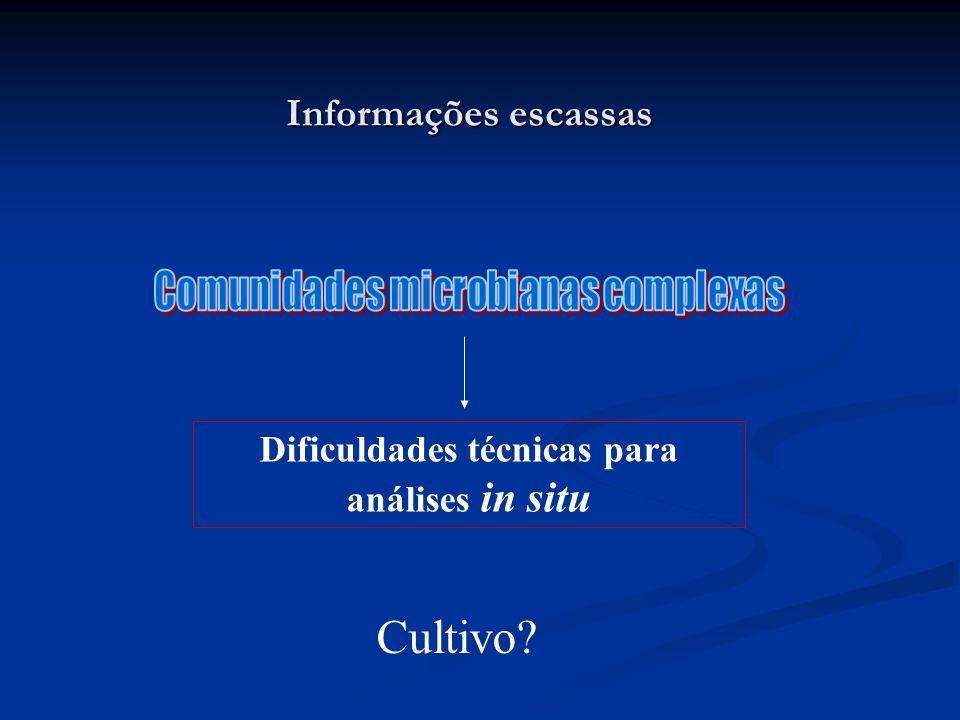 Informações escassas Dificuldades técnicas para análises in situ Cultivo?