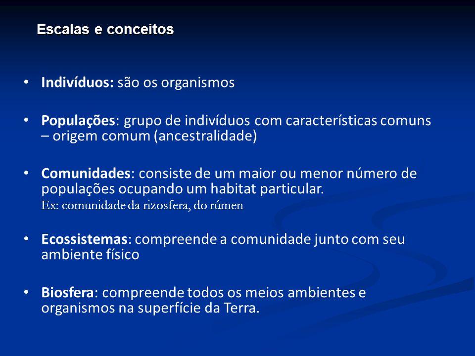 Indivíduos: são os organismos Populações: grupo de indivíduos com características comuns – origem comum (ancestralidade) Comunidades: consiste de um m
