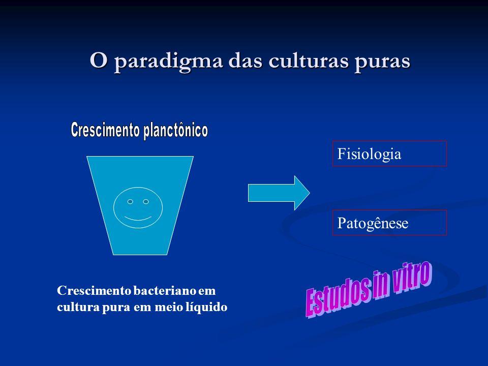 O paradigma das culturas puras Crescimento bacteriano em cultura pura em meio líquido Patogênese Fisiologia