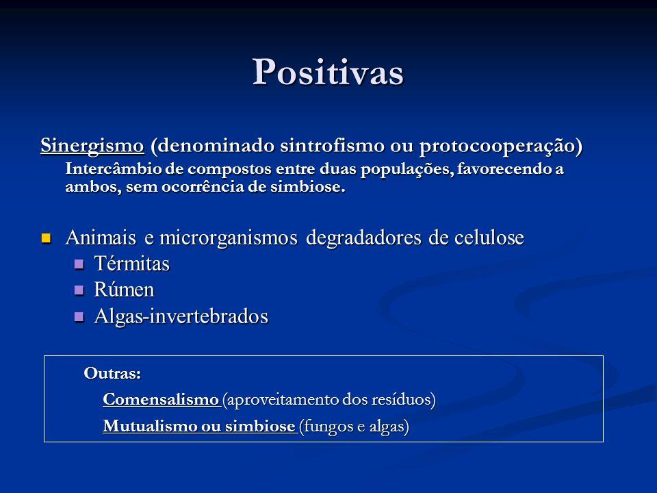Positivas Sinergismo (denominado sintrofismo ou protocooperação) Intercâmbio de compostos entre duas populações, favorecendo a ambos, sem ocorrência d